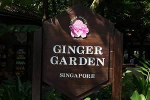 Ginger Garden Singapore