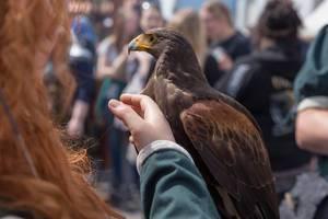 Girls pets an eagle