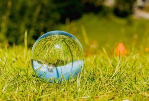 Glaskugel auf dem Rasen