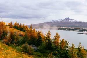 Glowing trees across the river from Akureyri / Glühende Bäume über dem Fluss von Akureyri