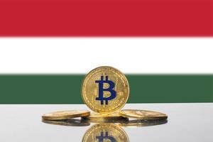 Goldene Bitcoins arrangiert vor der Flagge des Landes Ungarn