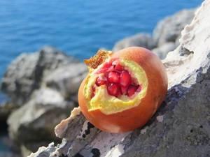 Granatapfel mit Granatapfelkernen