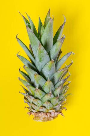 Green pineapple leaves on yellow background (Flip 2019)