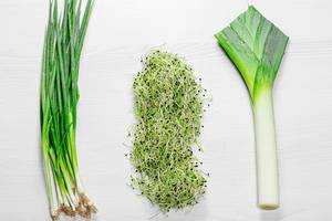 Green young onion, leek and micro green onion. The view from the top