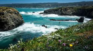 Große Wellen in Mendocino, Kalifornien