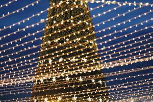 Großer Outdoor-Weihnachtsbaum mit reichlicher Beleuchtung, Nachtaufnahme