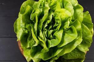 Grüner Kopfsalat auf der schwarzen Tabelle