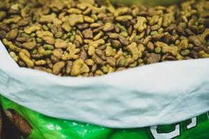 Grüner Sack mit Trockenfutter für Hunde in der Form von Herzen, Kugeln und Kauknochen in braun und grün