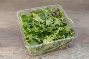 Grünkohl in einem Plastikbehälter