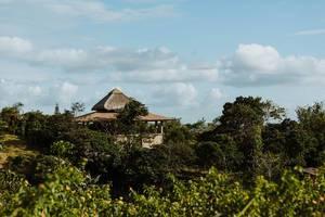 Halboffenes Ferienhaus eingebettet in sattgrünem Wald
