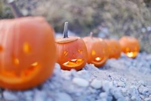 Halloween pumpkin lanterns with candles (Flip 2019)