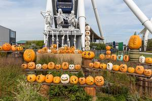 Halloween season at Navy Pier: many spooky pumpkins with different faces and skeletons