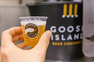 Hand holds beer in a small plastic cup with the brand logo of the famous Chicago Goose Island Beer Company
