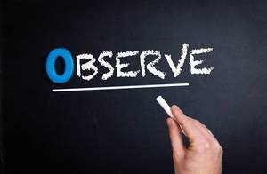 """Hand schreibt das Wort """"Observe"""" - Beobachten / Observieren - mit Kreide auf eine schwarze Tafel"""