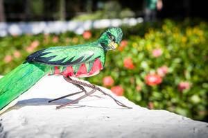Handbemalter Quetzal Vogel