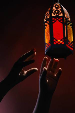 Hands of unrecognizable person trying to reach a lamp.jpg