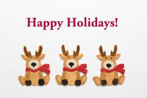 Happy Holidays - Rentiere