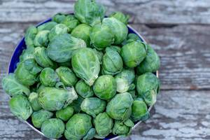 Harvest Brussels sprouts