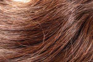 Healthy long dark hair background, close- up (Flip 2020)