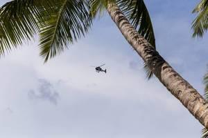 Helikopter fliegt am blauen Himmel hinter einer Palme auf Mahé, Seychellen
