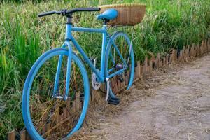 Hellblau bemaltes Fahrrad mit Bastkorb auf Weg vor hohem Gras in Ho Chi Minh City, Süd-Vietnam