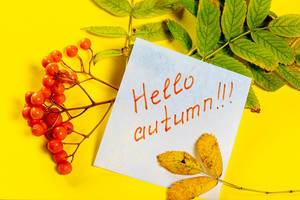 Hello-autumn-tag-and-autumn-leaves-with-Rowan-berries-on-a-yellow-background.jpg