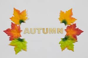 """Herbstblätter und das Wort """"Autumn"""""""