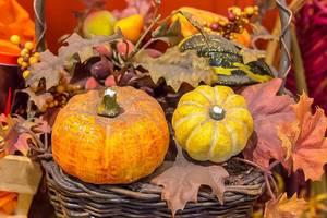 Herbstdeko für das traditionelles Erntedankfest in den USA