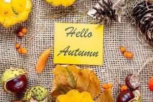 Herbstlicher Hintergrund mit Kastanien und bunten Blättern umgeben eine Hello Autumn Schrift auf gelbem Papier