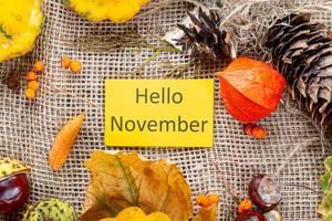 Herbstlicher Hintergrund mit Kastanien und bunten Blättern umgeben eine Hello November Schrift auf gelbem Papier