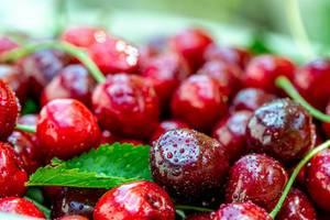 Hintergrundbild mit frischen, roten Kirschen