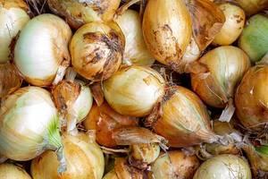 Hintergrundbild mit ganzen, rohen Zwiebeln
