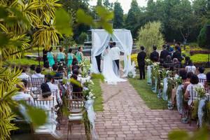 Hochzeitspaar steht vor Traualter aus weißem Tüll in Garten, Hochzeitsgäste und Brautpaar von hinten zu sehen