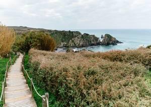 Holzsteg führt durch grüne Umgebung zu felsigem Strand bei Vila do Bispo, Portugal