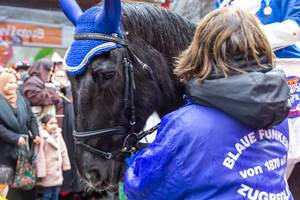 Horse riders and horse-drawn carriages are a large part of the tradition of the Carnival in Cologne. Here a horse parading with the traditional carnival society of the Blaue Funken