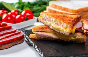 Hot ham and cheese sandwiches with tomatoes and herbs in the background