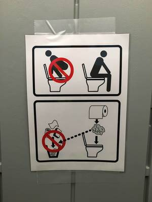 How to use a Western Toilet