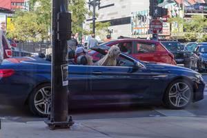 Hund sitzt auf dem Beifahrersitz im Cabrio