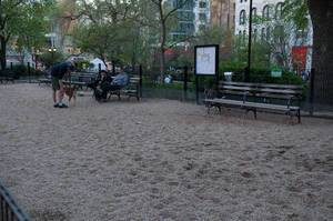 Hundebereich im Park in New York City, USA