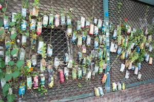 Improvisational wall garden made out of used bottless. Berlin, Germany