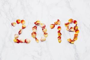 Jahr 2019 geschrieben mit Blumenblättern. Blütenblätter einer Rose auf Marmor