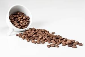 Kaffeebohnen aus einer weißen Keramiktasse verschüttet vor weißem Hintergrund