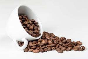 Kaffeebohnen in einer Kaffeetasse vor weißem Hintergrund