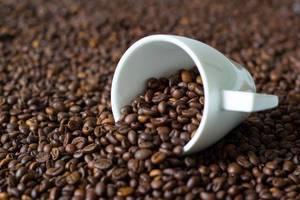 Kaffeetasse auf einem Haufen von Kaffeebohnen