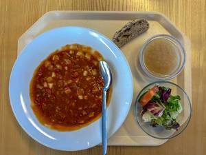 Kantinenmenu mit Gulasch, grünem Salat mit Tomate, Apfelmus und Brotscheibe auf Tablett