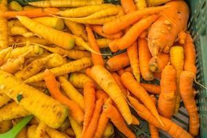 Karotten und Selleriewurzeln auf dem Markt in Ljubjlana in Slovenien