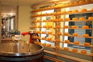 Käse-Geschäft