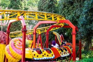 Kids dragon roller coaster  Flip 2019