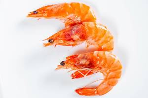 King prawns on white background  Flip 2019