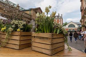 Kisten mit Blumen am Markt in London